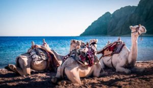 Viajes de aventura Dahab