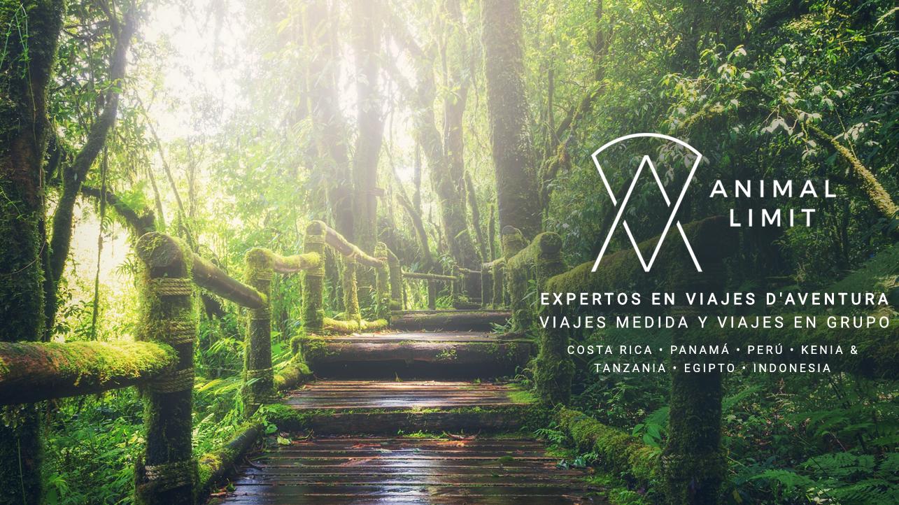 Senderismo Costa Rica: Las mejores rutas